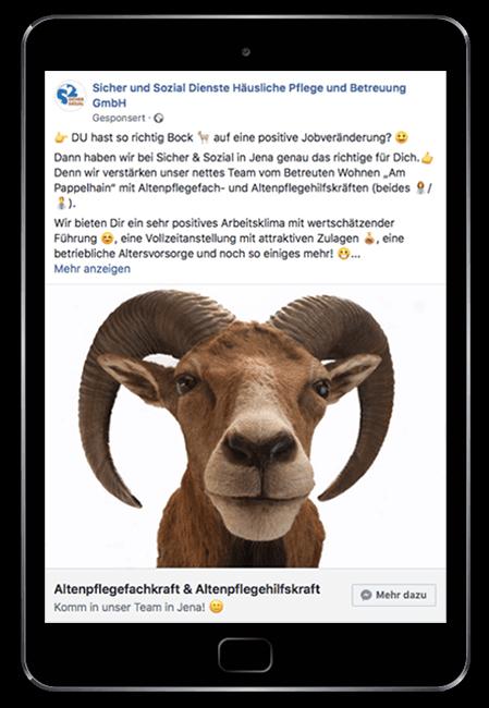 Froot Media AG - Social Recruiting - Sozial und Sicher Dienste - Facebook